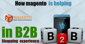 b2b e-commerce using Magento
