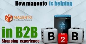 b2b e-commerce using Magento